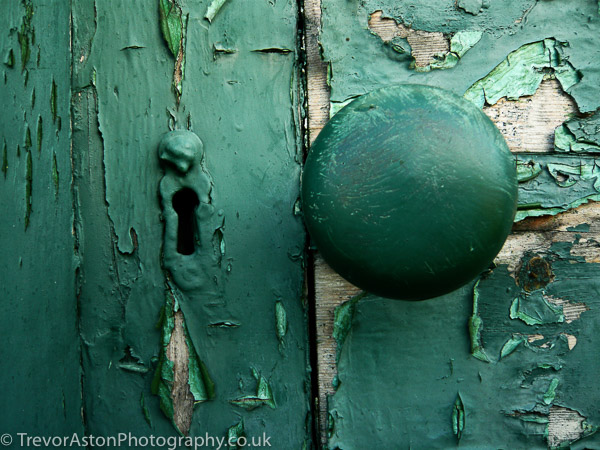 the-colour-green-Trevor-Aston-Photography-Richmond-Kingston-upon-Thames-50