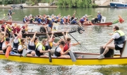 Kingston upon Thames dragon boat race-12